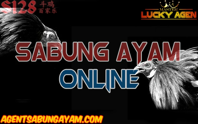 S1288 Sabung Ayam Live Streaming
